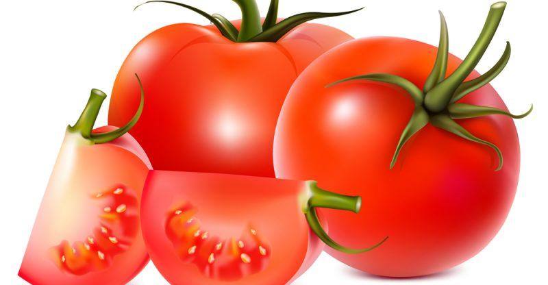 فوائد الطماطم وأهميتها لصحة الجسم